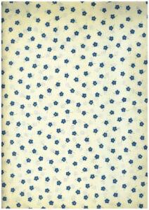 Fiorellino Blu Bice H. 150